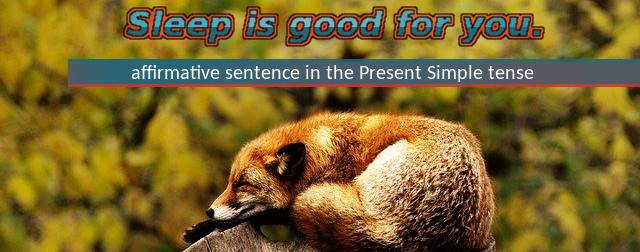 Affirmative sentence in Present Simple tense