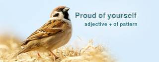 Adjective + of as a dependent preposition pattern