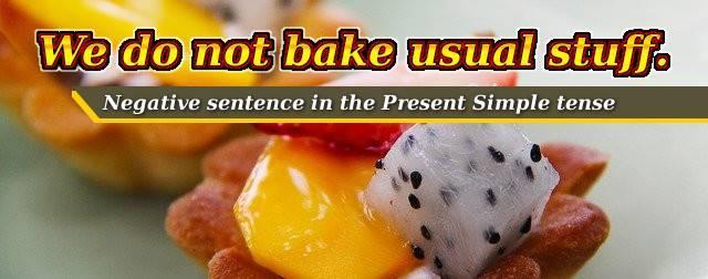 Negative sentence in Present Simple tense